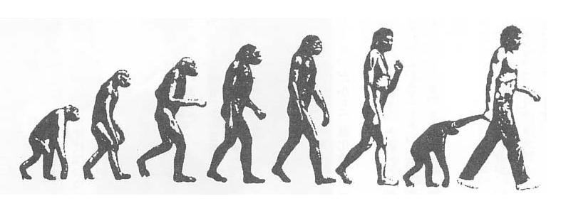 人類の拡散と進化シリーズ4~ホモ・サピエンスの …